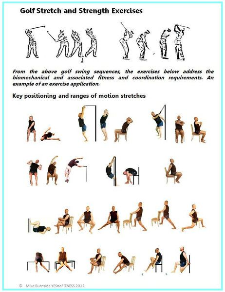 Stretch exercise dvd for the elderly