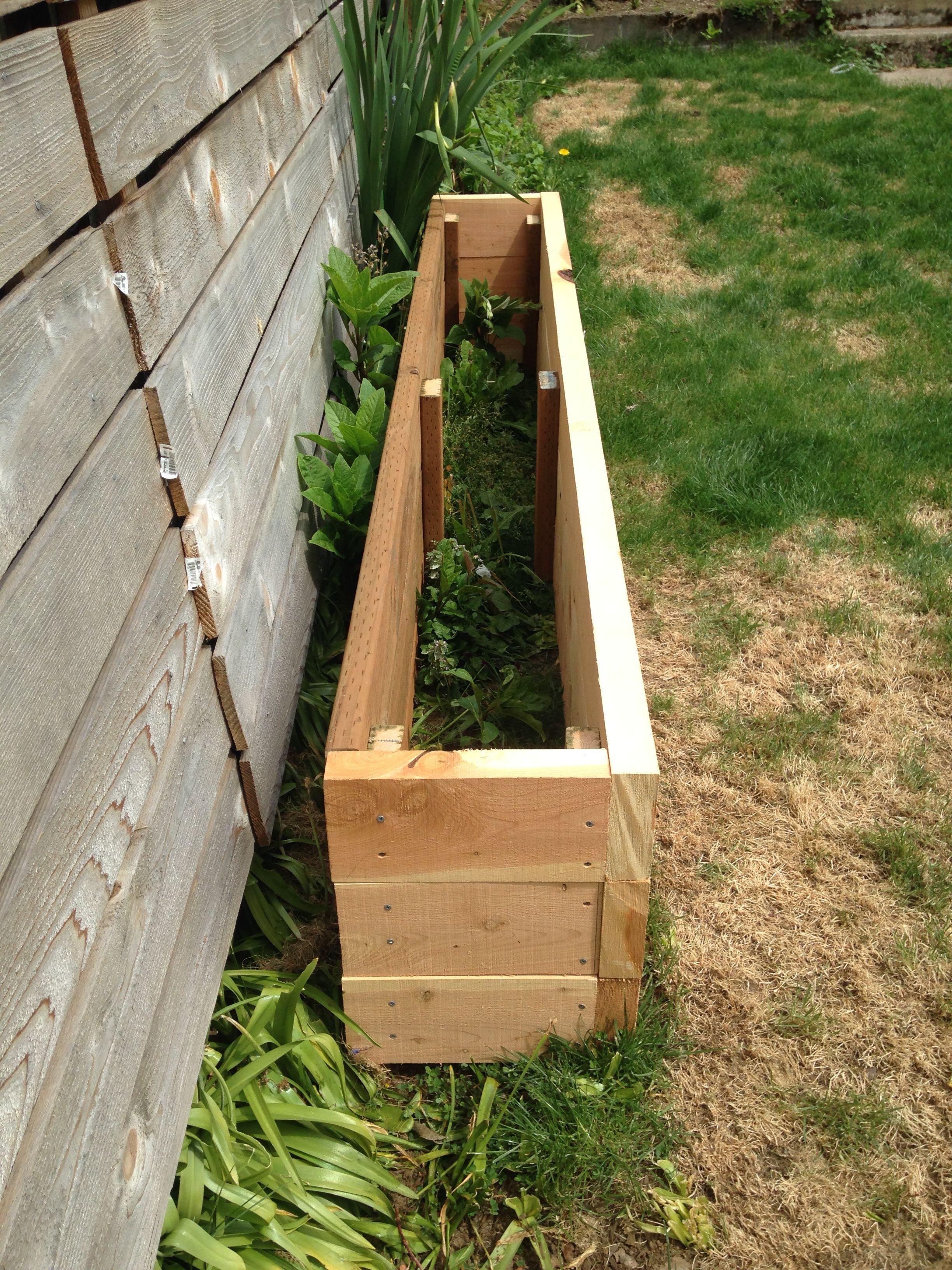 Juniper planter boxes for bamboo. Garden boxes, Yard