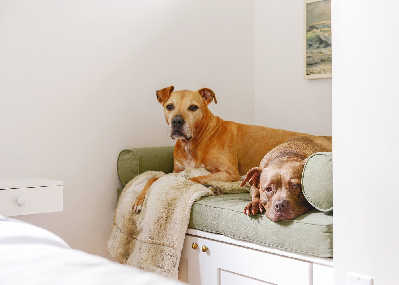 How We Made a Dog Bed with Storage! Window seat storage