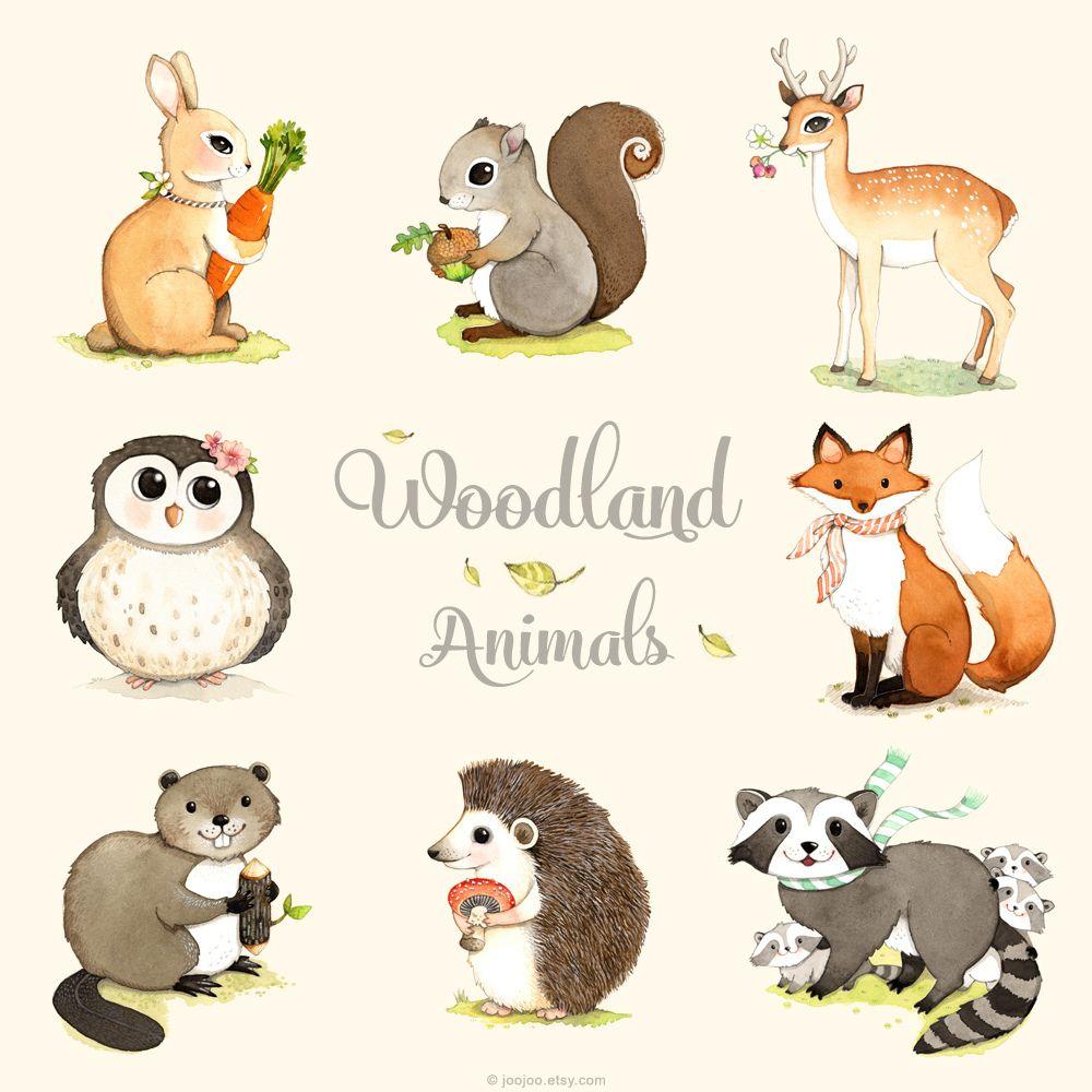 Line Drawings Of Woodland Animals : Woodland animals print set