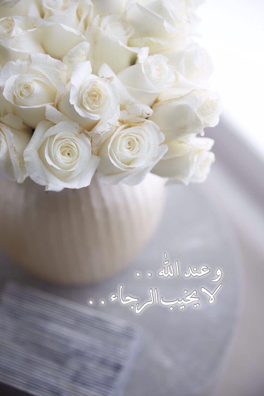 خاطرة و نصيحة الى كل قلب مجروح من الناس لا تطالب الآخرين بالكمال القلب خ ل ق لي عل ق بواحد و Beautiful Flowers Wallpapers White Flowers White Roses