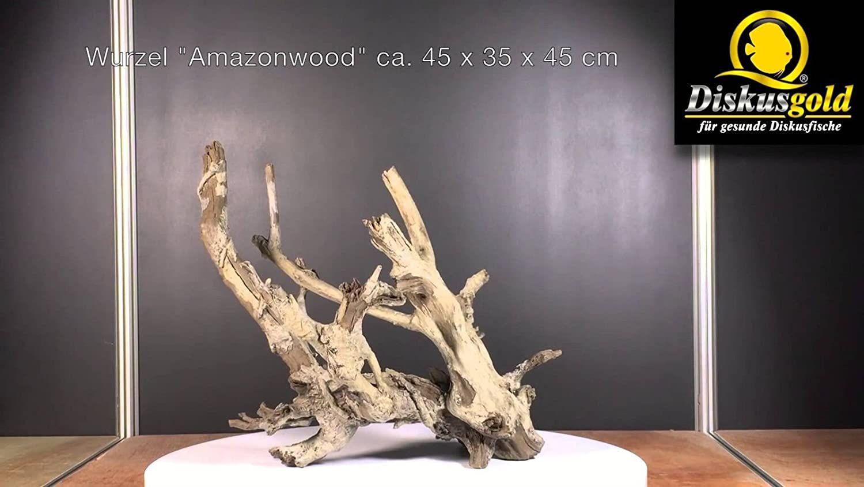 Diskusgold Wurzel Amazonwood Xl Aquarium Dekoration Einrichtung In 2020 Dekoration Aquarium Deko Wurzel