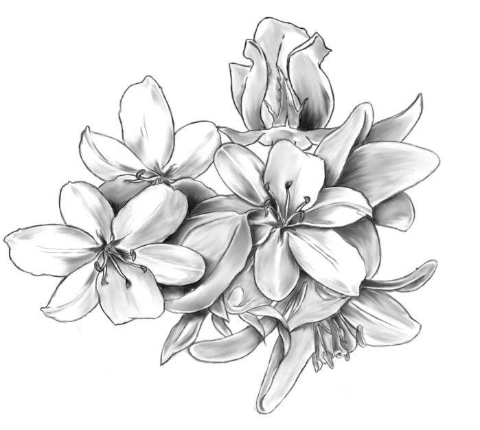 Большой цветок рисунок карандашом