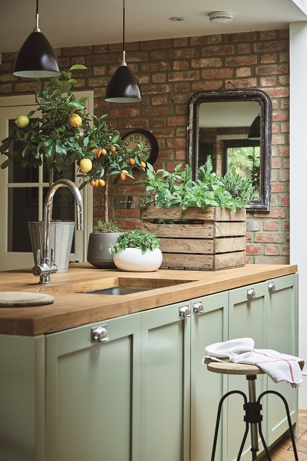 Book Review At Home with Plants Rustic kitchen, Kitchen