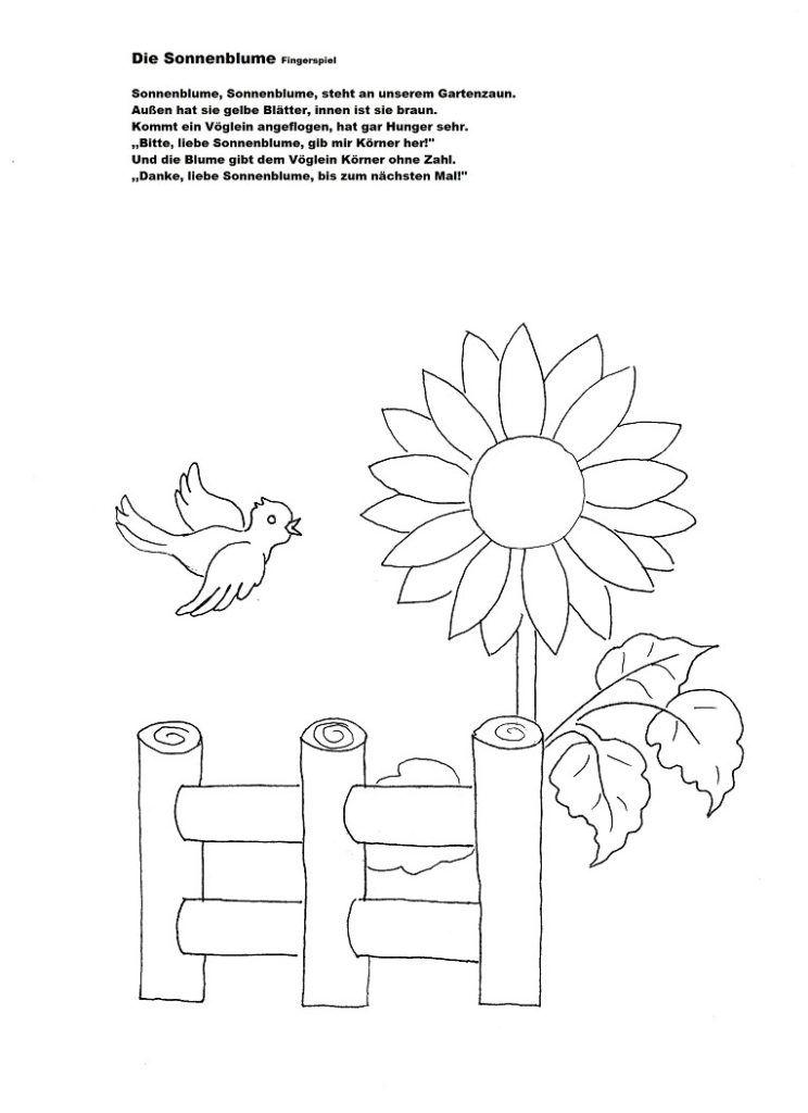 Sprachförderung mit Kindern im Herbst - Die Sonnenblume