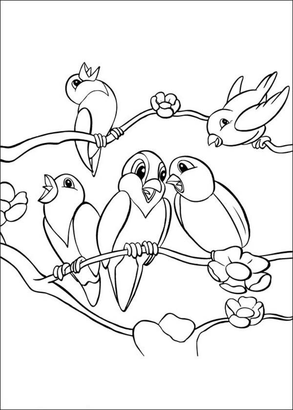 Birds School Of Bird Singing Together Coloring Page Bird