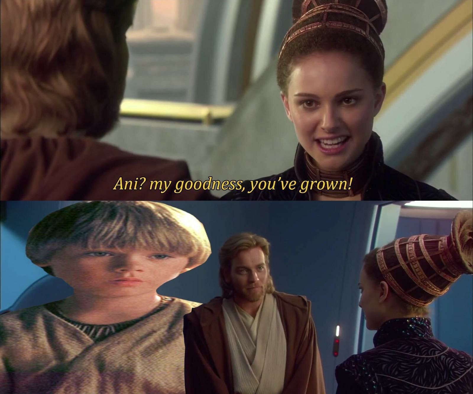 Palpatinedidnothingwrong Memes Starwars Starwarsmemes Meme Funny Anikan Padme Prequelmemes Ani Star Wars Humor Star Wars Quotes Funny Star Wars Memes