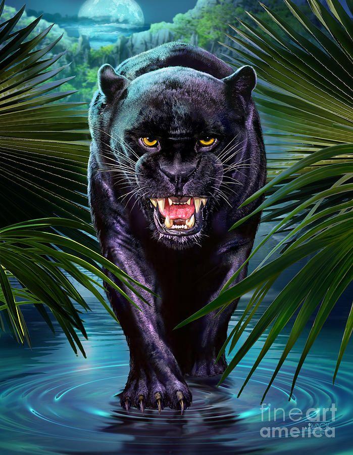 Panther Painting Pantera Negra Schwarzer Panther Panther Y Katzen