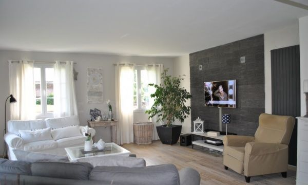 Salon Grey living rooms, Living rooms and Room - photo de salon salle a manger