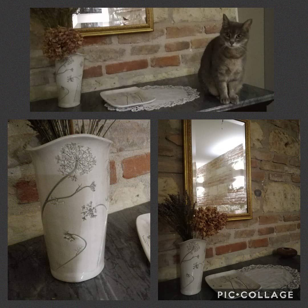 [New] The 10 Best Home Decor (with Pictures) -  Wild carrot print: pot and plate (the cat is real! ) Thanks @l_art3m1s1a for the pics! . . . . . . . . . . #nani_ceramiche #ceramica #ceramicaartistica #artigianatoitaliano #madeinitaly #ceramicaitaliana #ceramicaitalianacontemporanea #botanica #carotinaselvatica #botanicalceramics #botanic #wildcarrot #carotina #ombrellifere #cat #gatto #thecatisonthetable #interiordecor #interiors #homedesign #homedecore #complementidarredo #architettodinterni #m