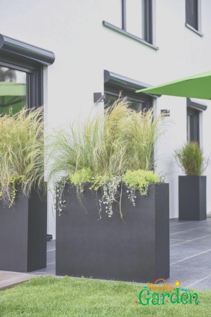 Pflanzkübel als Sichtschutz auf Terrasse Pflanzkübel