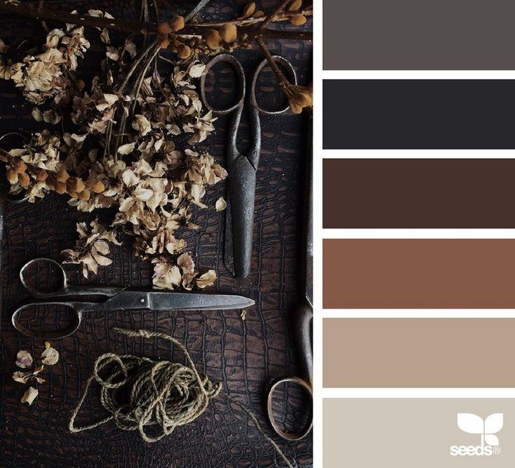 Bescheiden Welche Wandfarbe Passt: Welche Farbe Passt Zu Braun? Tipps Für Schöne