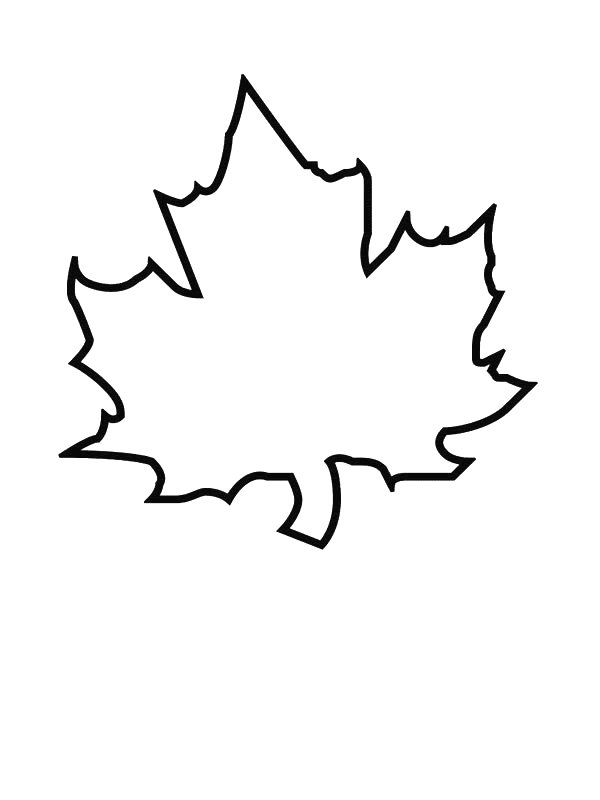 kidsnfun  ausmalbild blatter blatter  fall leaves