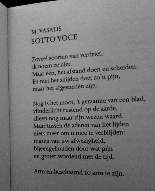 Sotto Voce Vasalis Mooie Woorden Citaten En Woorden