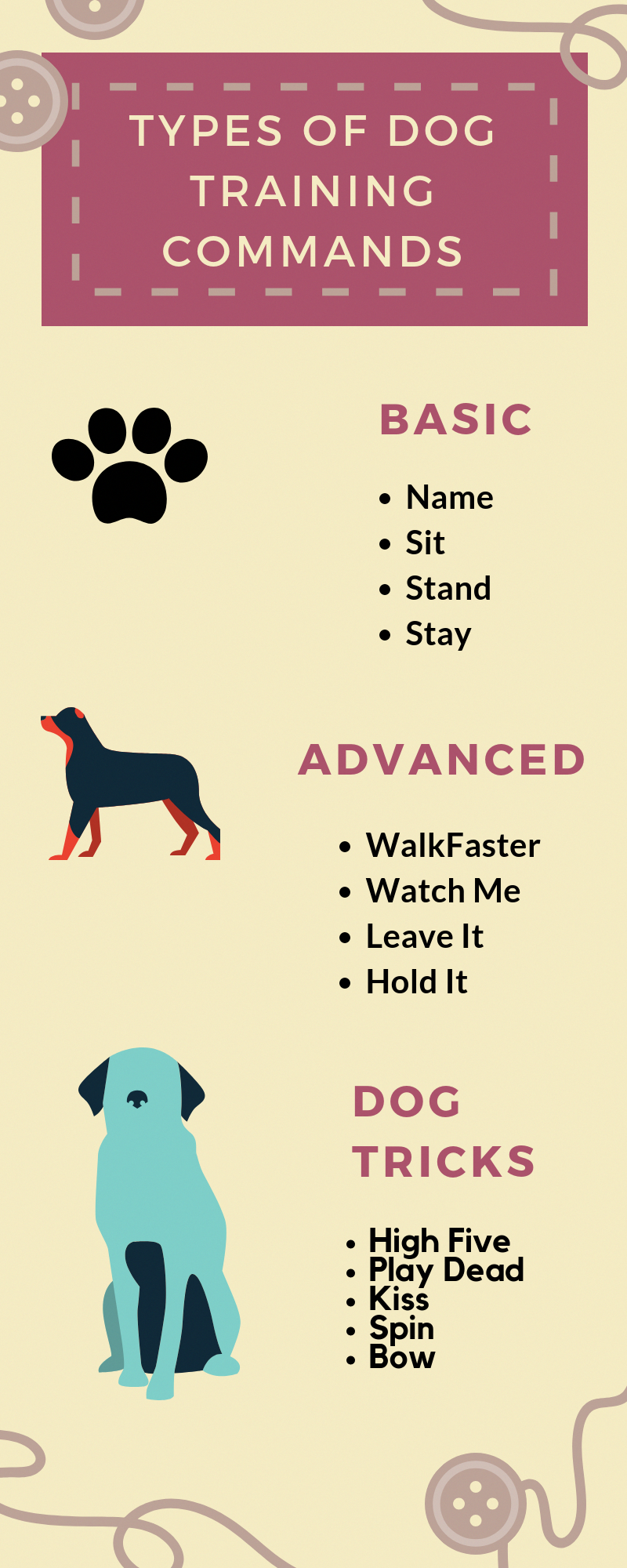 Pet Play On Words : words, Choose, Long-term, Command, Words, First, Teaching, Confuse, Them., #dogtraining, Training,, Types, Dogs,, Commands