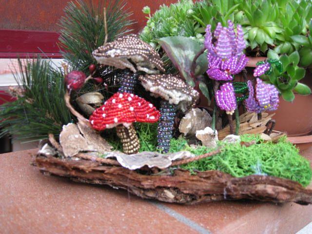 autunno ,boschetto di funghi e ciclamini