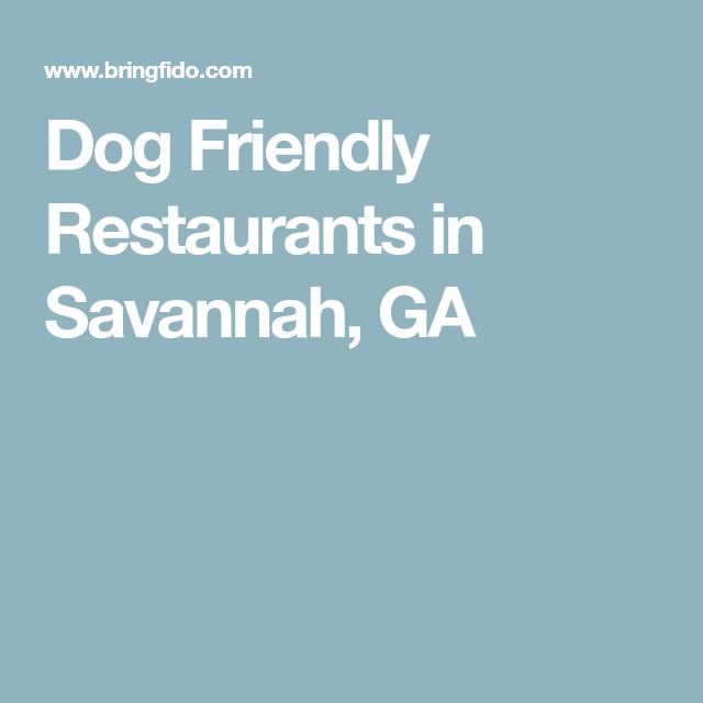 Dog Friendly Restaurants In Savannah Ga Savannah Chat Dog Friends Restaurant