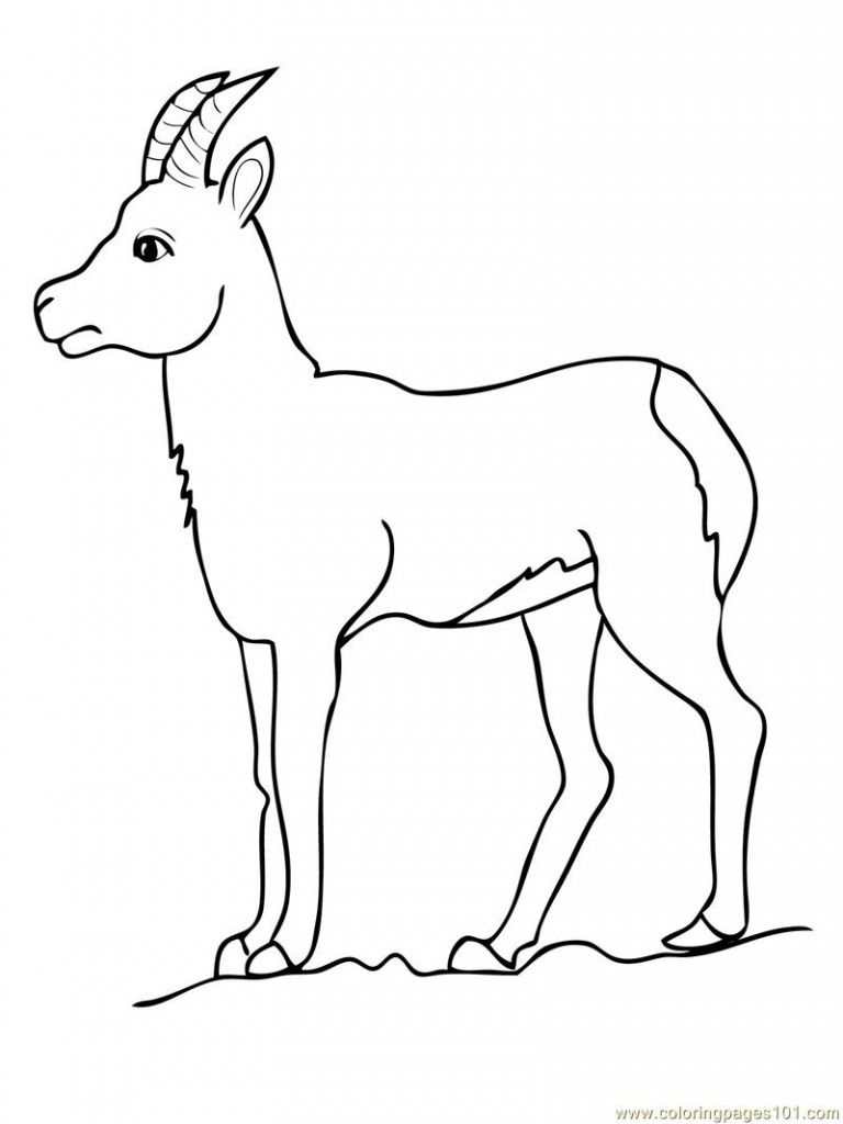 Free Printable Goat Coloring Pages For Kids | Goats and Free printable