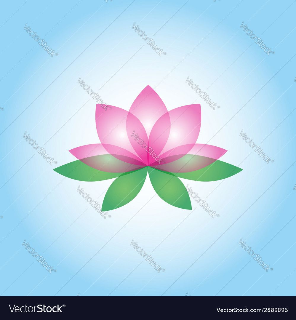 Lotus Flower On The White Blue Background Isolated Object Download