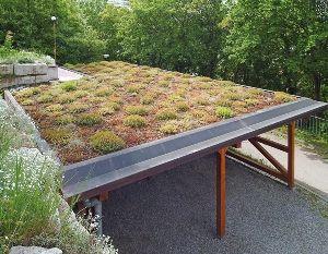 Gardenplaza - Gründach-Pakete im Netz bestellen und spielend leicht selbst verlegen
