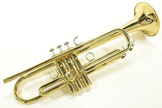 Rose Glen North Dakota ⁓ Try These Trumpet Tuner