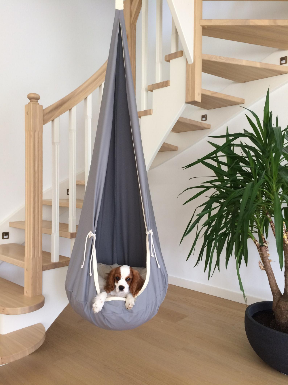 Wonderful Light Grey Hanging Cocoon Swing For Kids Adults