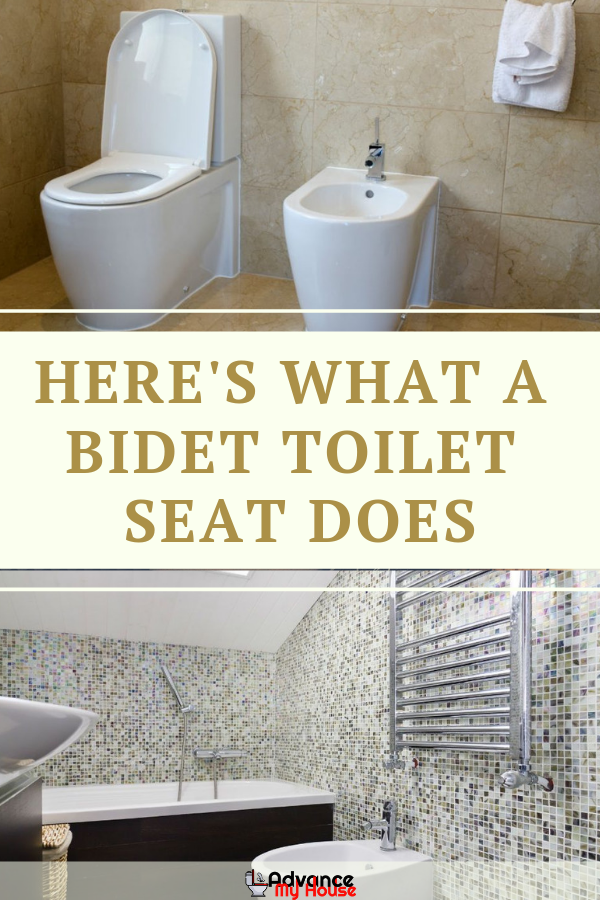 What Does A Bidet Toilet Seat Do With Images Bidet Toilet