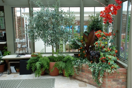 winter garden designs ideas shelterness also mb greenhouse rh pinterest
