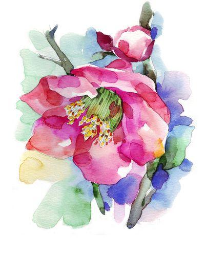 Cherry Blossom Art Print Print Shop Watercolor Flowers Cherry Blossom Art Cherry Blossom Painting