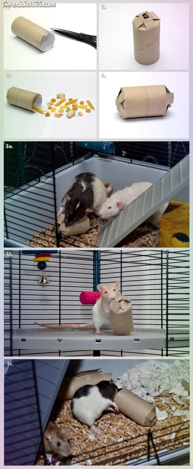 Tolle Die Lustige Ratte Aus Haustier Und Kafig Rat Toys Diy Rat Toys Hamster Toys