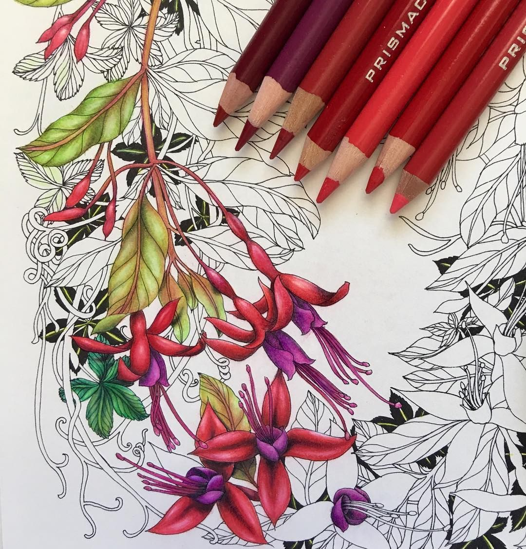 Pin by jackie steenson on floral coloring books pinterest