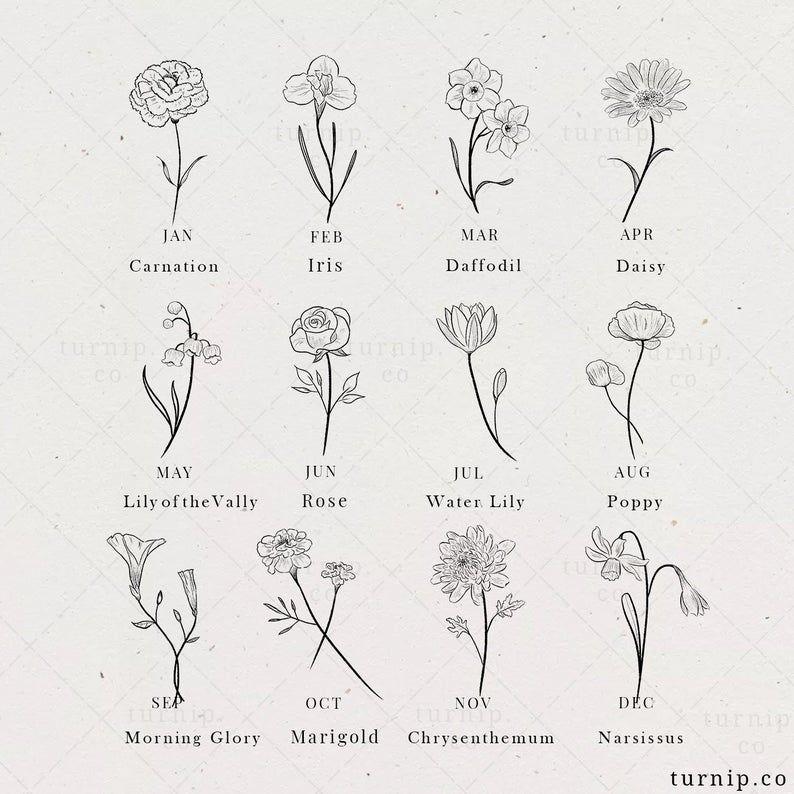 Birth Flower Clipart, Rose, Iris, Lily Clipart, Bi