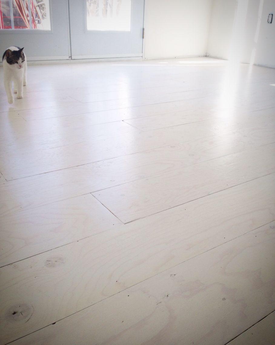 Diy Whitewashed Plywood Floor Painted Plywood Floors