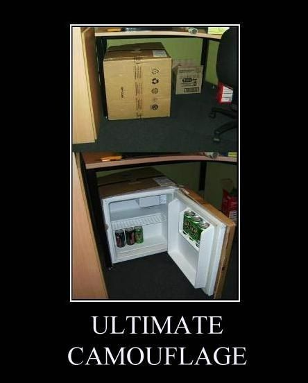 Ultimate camouflage for the dorm room!