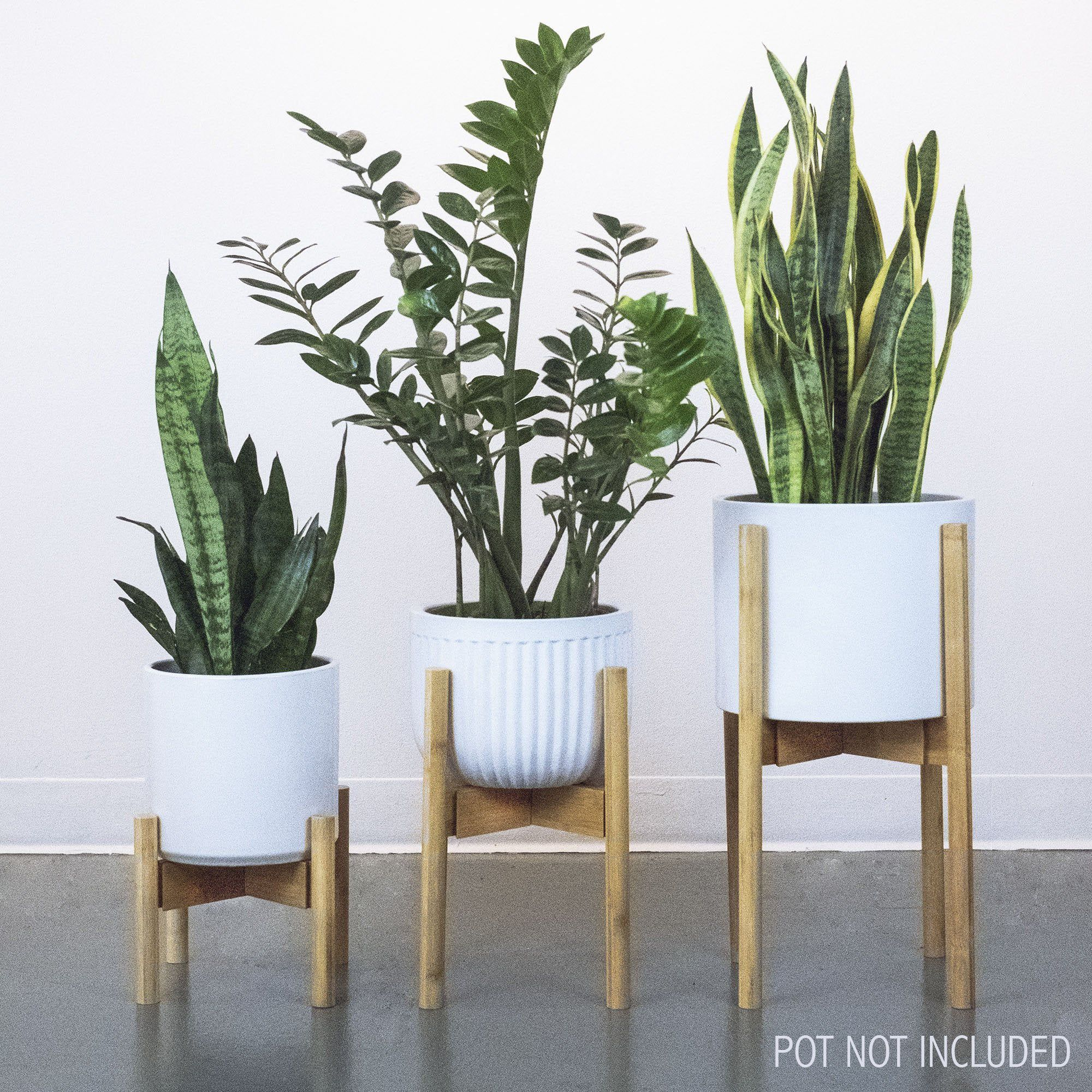 Image By Sabariah Che Mat On House Plant Stand Indoor Plant Stand House Plants Indoor
