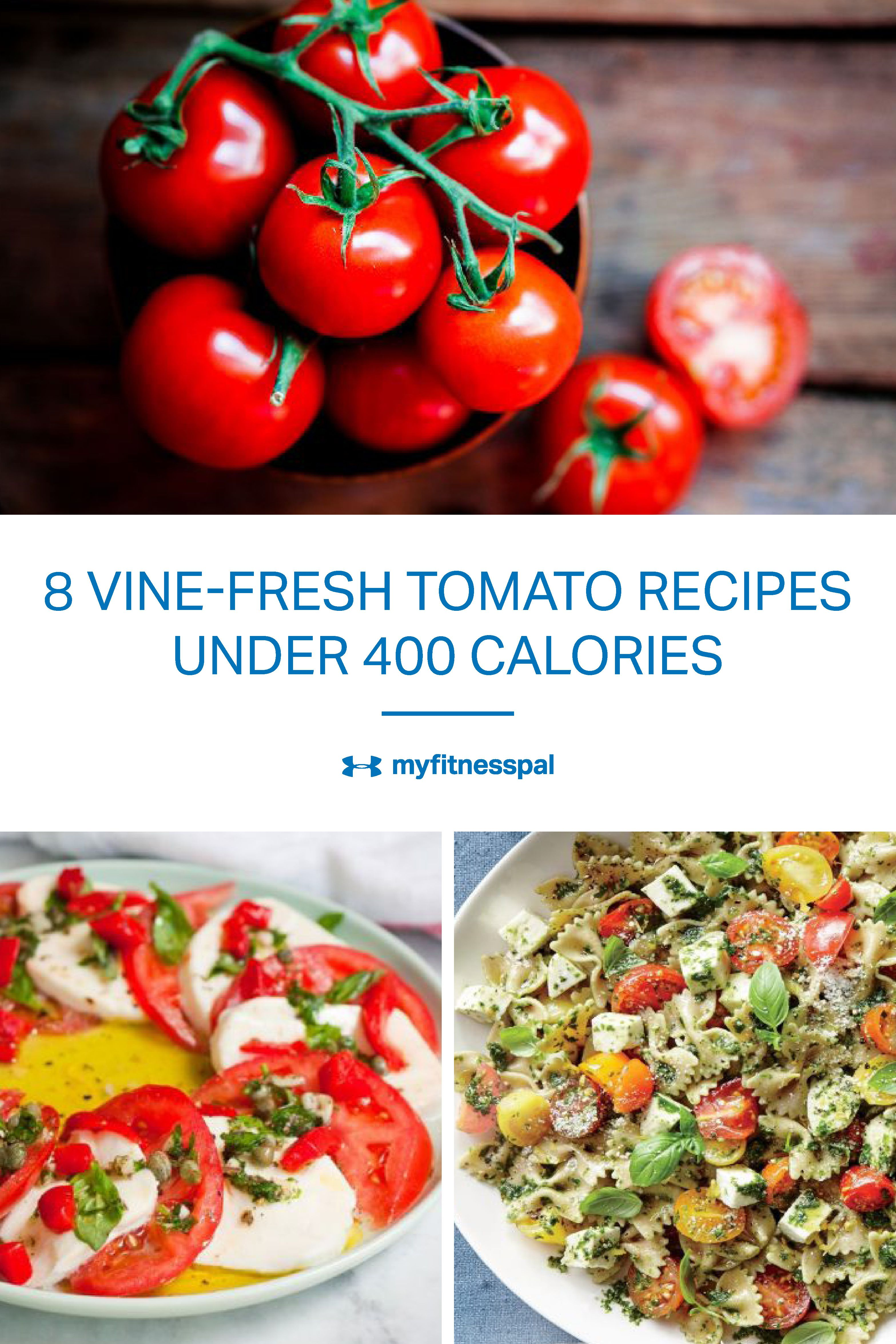 8 Vine Fresh Tomato Recipes Under 400 Calories Healthy Livin
