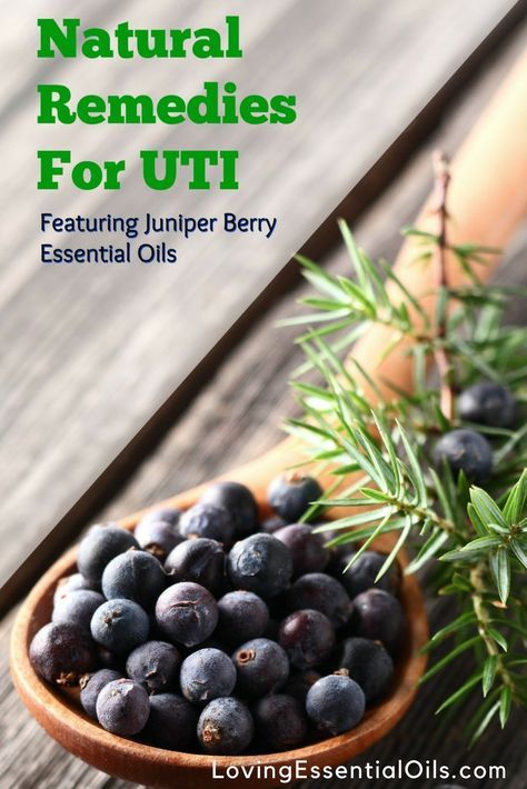 Natural Remedies for UTI Featuring Juniper Berry Essential Oils | Healthy Living | Urinary Tract Infection Home Remedies | Essential Oils Uses