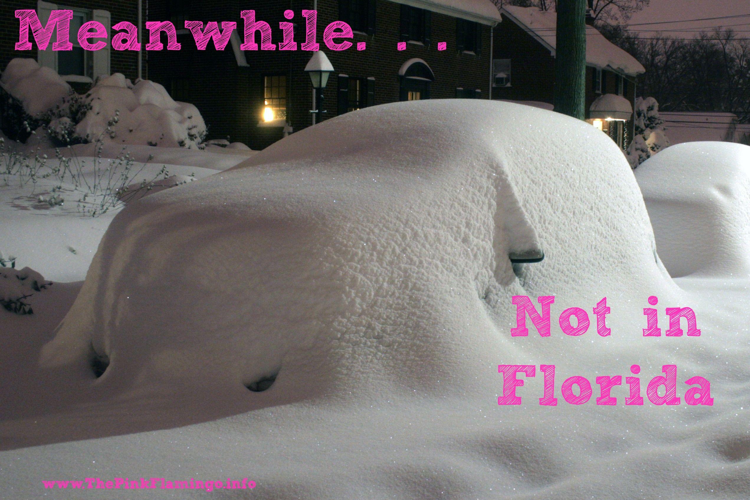 Not in florida notinflorida snowstorm snow snow