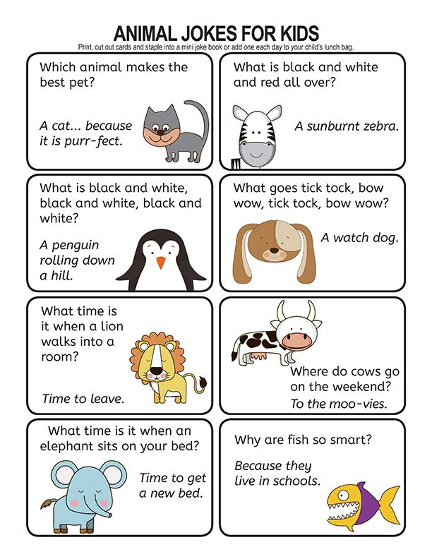 101 Kids Choice Animal Jokes