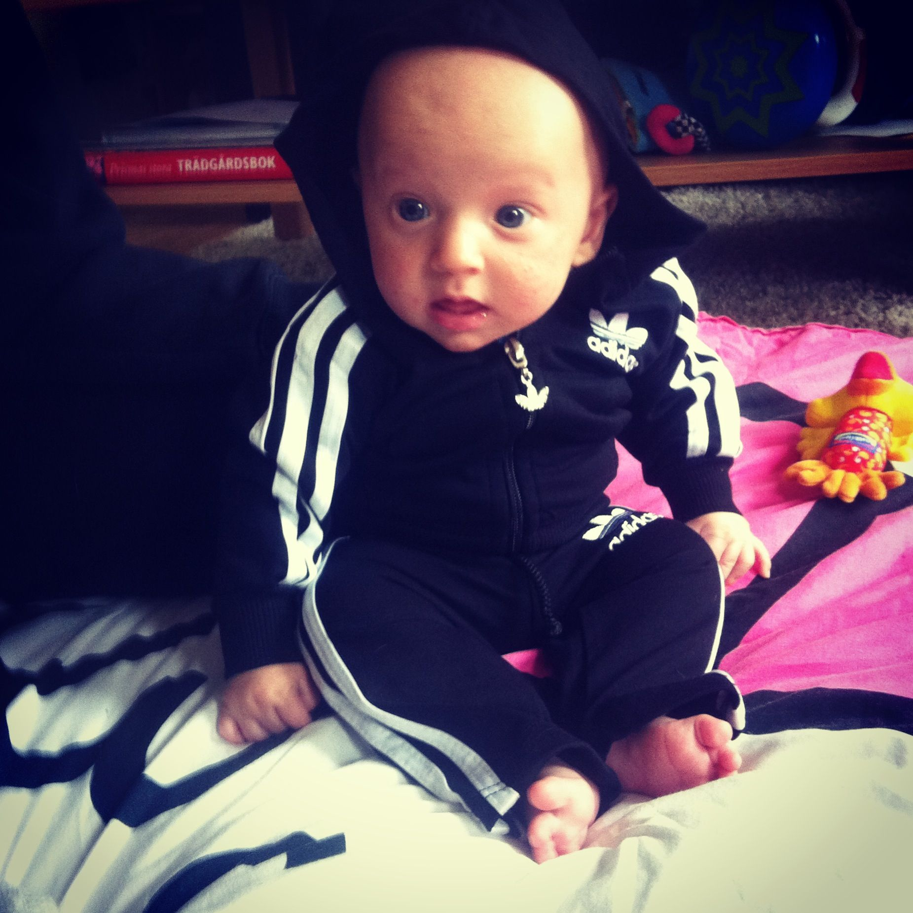 Cute baby boy in adidas dress