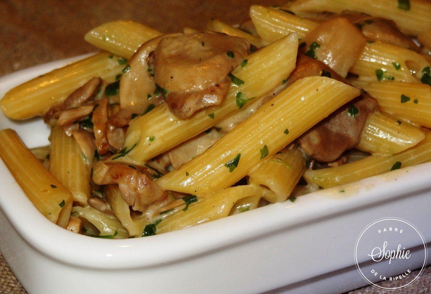 Penne sauce champignons