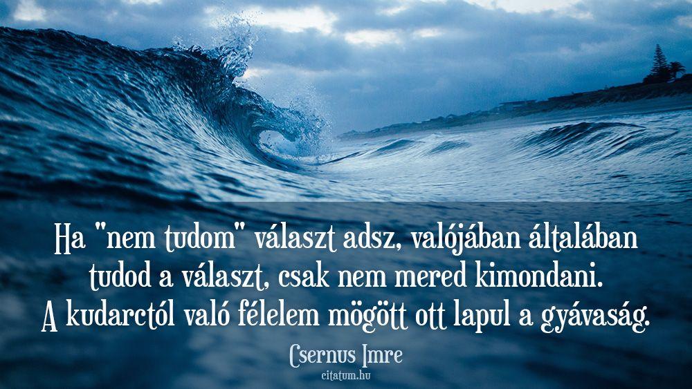csernus imre idézetek szerelem Csernus Imre idézet | Quotes, Pics, Lockscreen screenshot