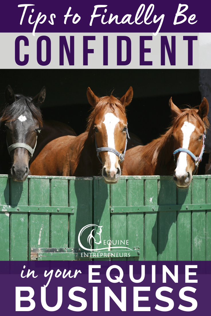 Gaining Confidence In Your Business Equine Entrepreneurs In 2020 Equines Successful Business Owner Jobs For Teens