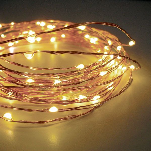 Check out the deal on 60 Warm White LED String Lights Battery ...