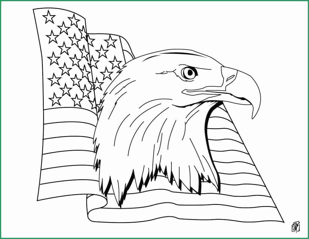 Coloring Book Military Pictures Lovely Coloring Books American Flag Star Coloring Page American Flag Coloring Page American Flag Drawing Flag Coloring Pages