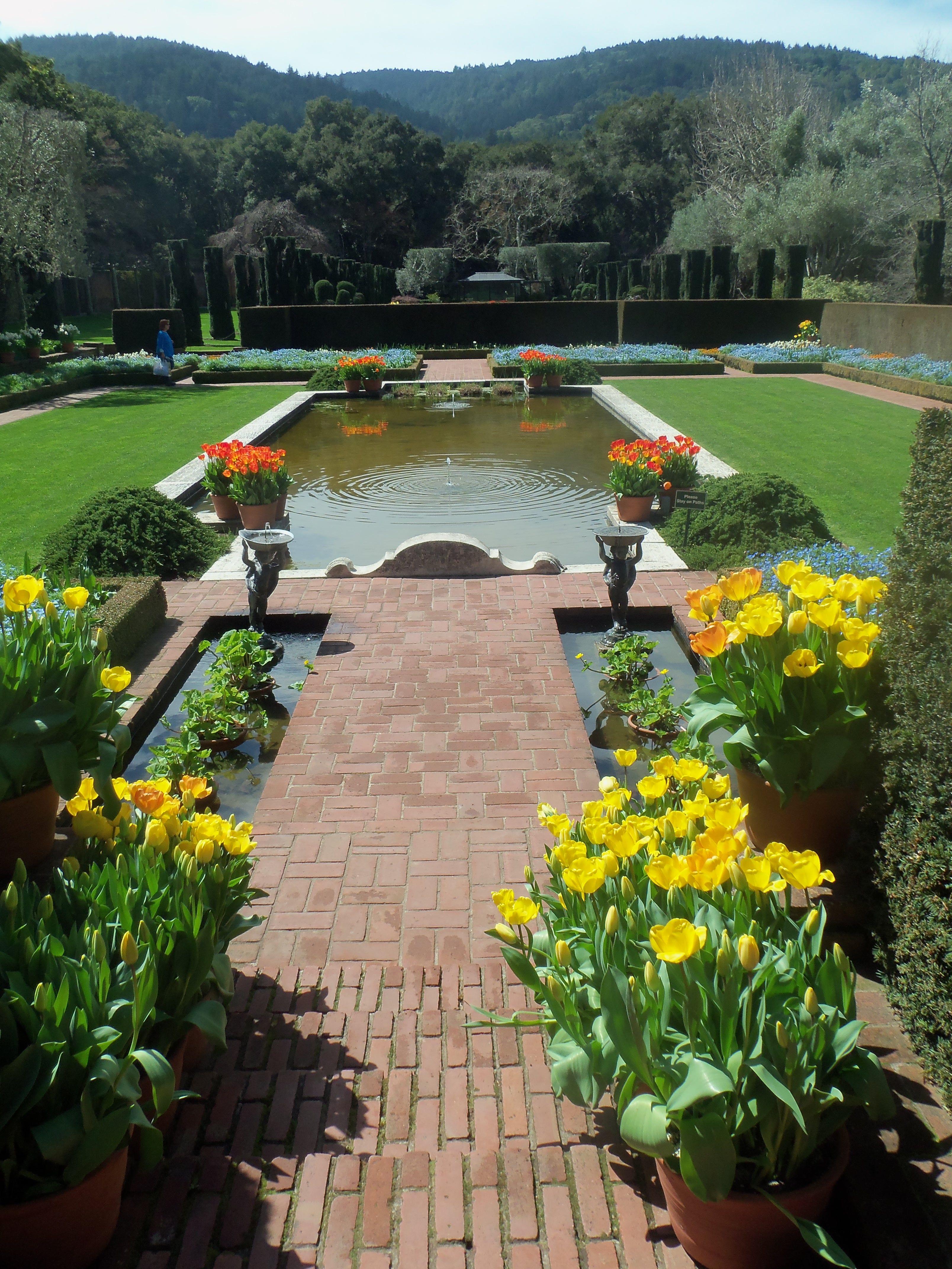 the estate garden at filoli, woodside, ca. near san francisco