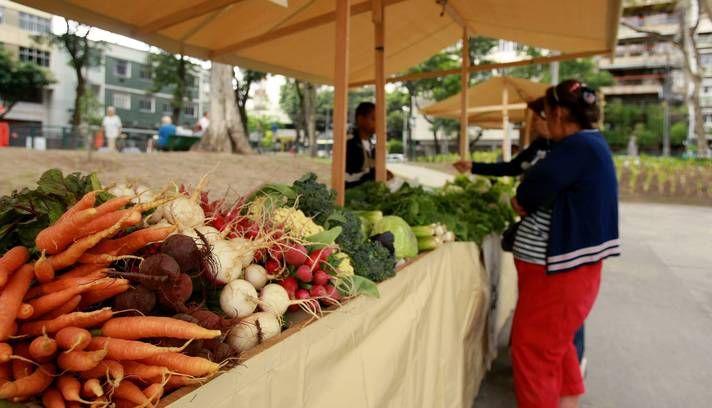 Nas capitais também têm feiras orgânicas. É só conferir nosso post e saber o local e horário das feiras em Belo Horizonte, São Paulo, Rio de Janeiro, Curitiba e Rio Grande do Sul.