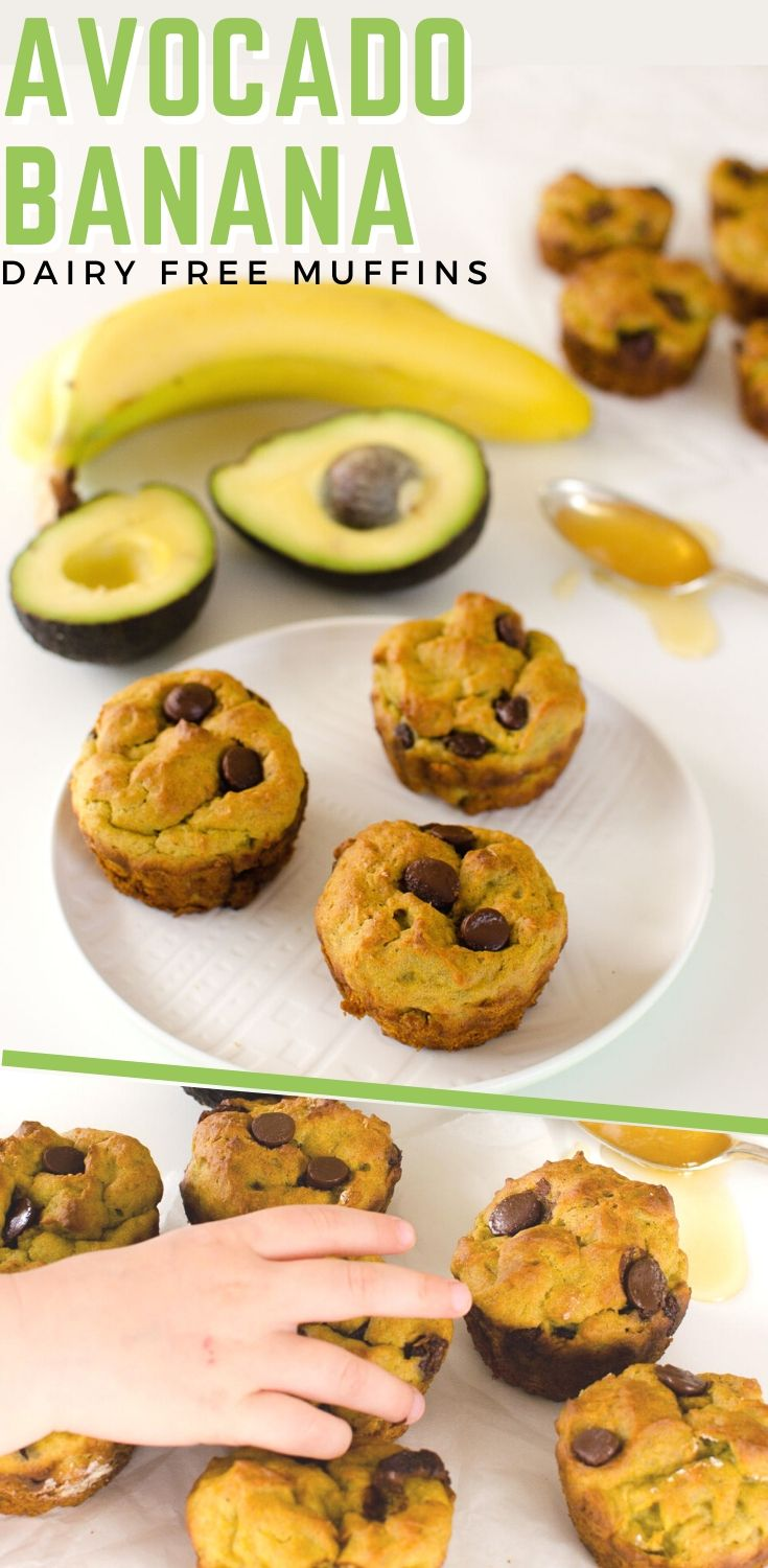 Avocado Banana Choc Chip Muffins – Dairy Free- Low Sugar