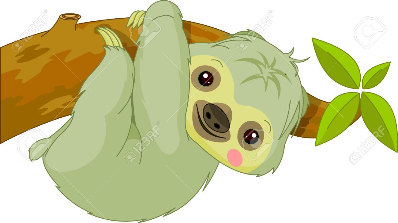 fun zoo illustration of cute sloth stock vector painting sloth [ 1300 x 731 Pixel ]