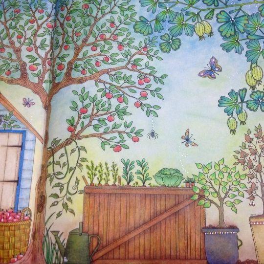Secret Garden Folha Dupla Abbora Jardim Secreto Johanna Basford Colouring InAdult ColoringColoring BooksJohanna